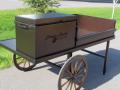 Cart -Jimmie Austin SIDE