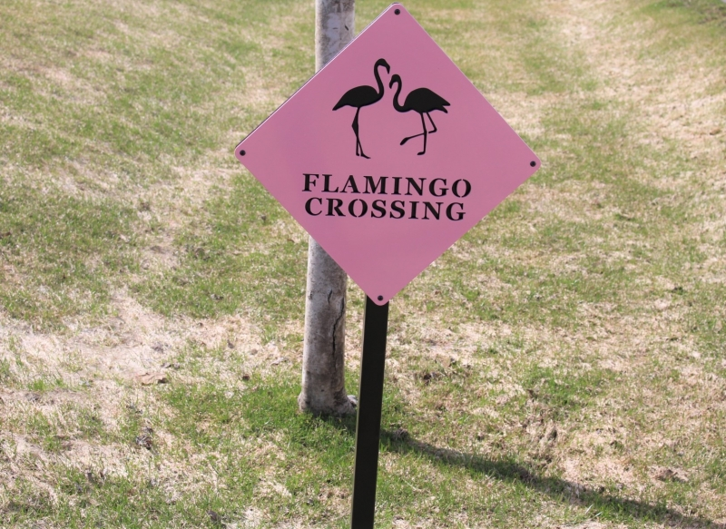 Directional Signs -Flamingo Crossing -Club at Colony Creek