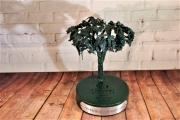 Broccoli Tree Award -Champions Retreat