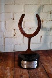 Horseshoe Award -Idaho Youth Ranch