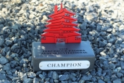 Junior Golf Tournament Awards -LedgeRock