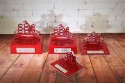Ship Awards -Hooper's Landing