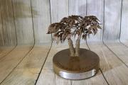 Tree Award -Frederica Golf Club