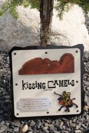 Golf Tournament Plaques -Kissing Camels (2)