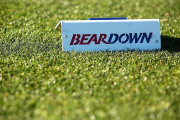 BEARDOWN-TEE-MARKER