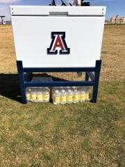 Insulated Cooler _University of Arizona